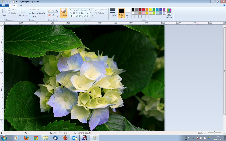 Cómo optimizar imágenes Photoshop Express Editor